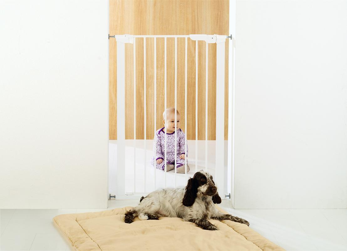 Dörr grind för hund